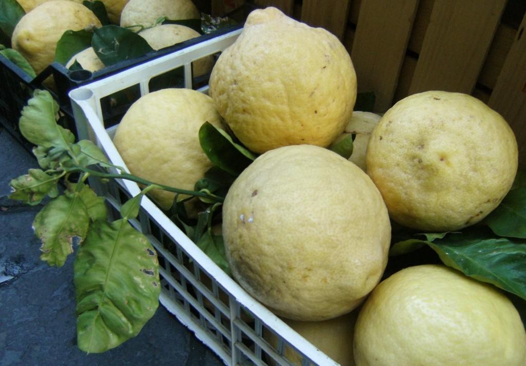 Italy - Sorrento - Lemons