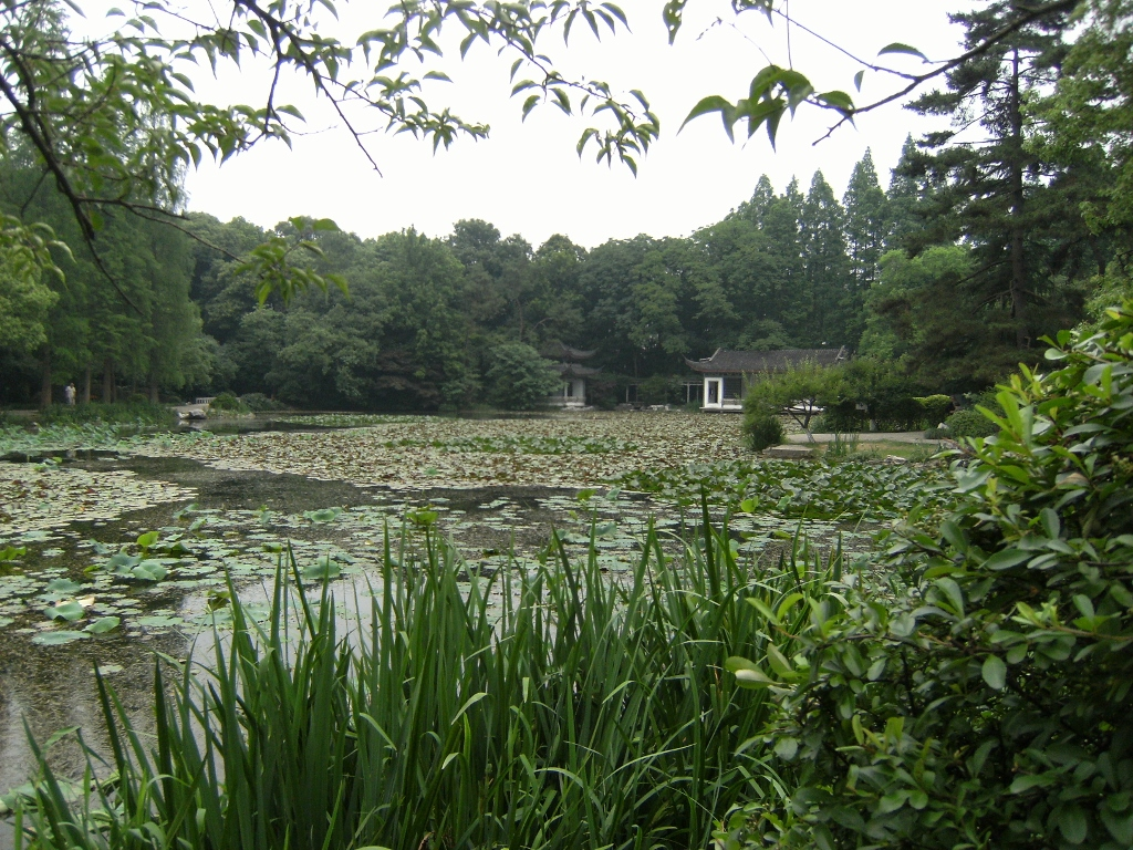 China - Hangzhou - Botanical Park - 1 (1024x768)