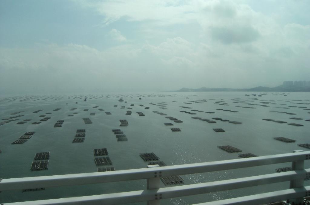 China - Hong Kong - Bridge - 2 (1024x677)